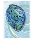 Paua Shell: Card