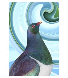 Kereru Portrait: Card