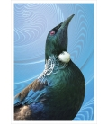 Tui Portrait: Card