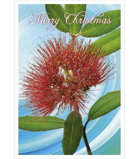 Pohutukawa Flower (Merry Christmas): Card