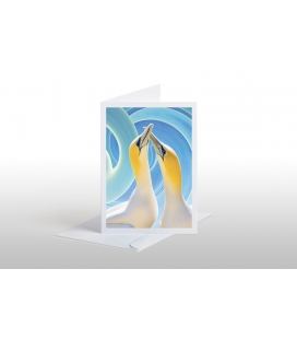 Gannet Couple: Card