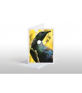 Tui among Kowhai Blossoms: Card