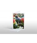 Tui in Pohutukawa: Card