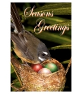 Fantail Christmas: Card