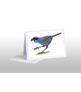 Kokako, blue-wattled crow: Card