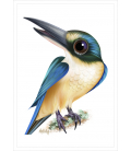 Kotare (Sacred Kingfisher): Card