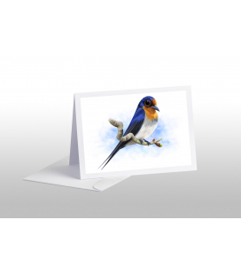 Welcome Swallow: Card