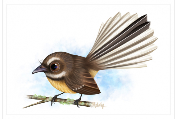 Piwakawaka, Fantail: Card