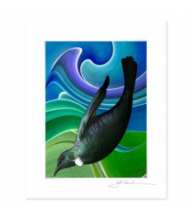NZ Iconography, Tui in Flight: 6x8 Matted Print